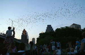 Photo via Barron Fujimoto http://bit.ly/1eN68at